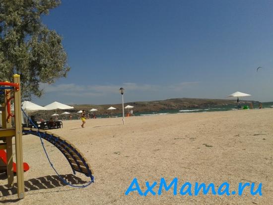 пляж из ракушек фото (1)