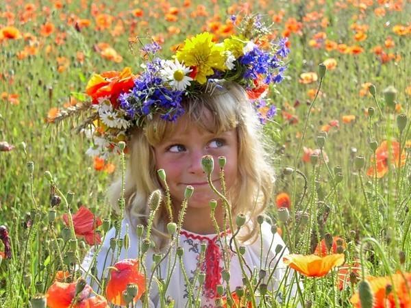 Стихи про цветы для детей короткие 3