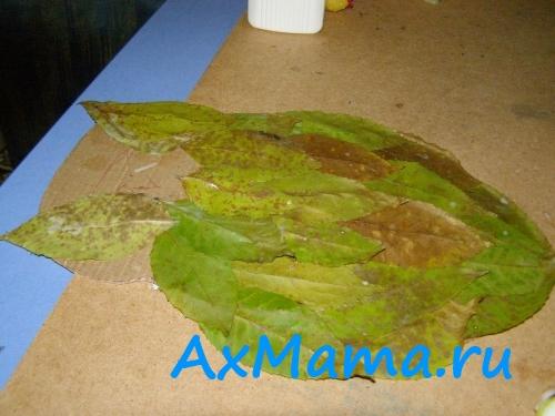 Поделки из листьев: сова