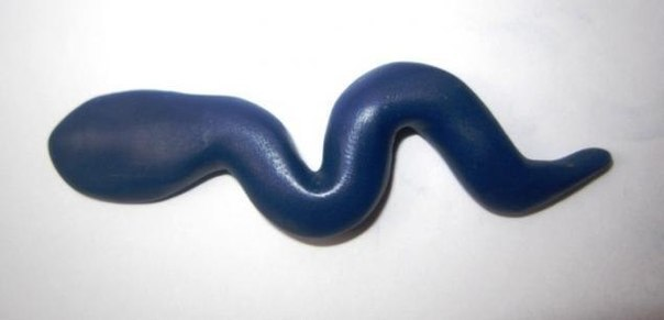 змея из пластилина (5)