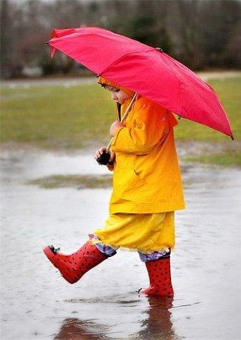 короткие стихи про дождь для детей