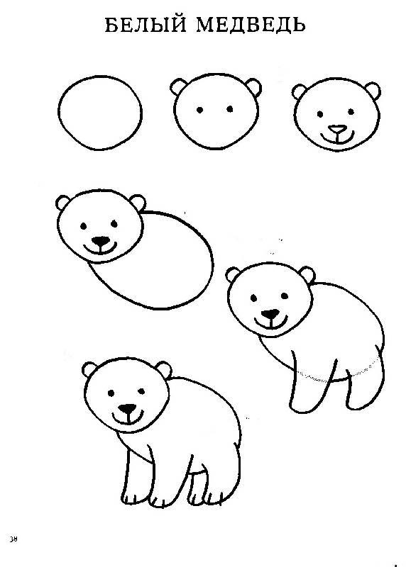 Пошаговые рисунки животных с помощью кругов и овалов (12)