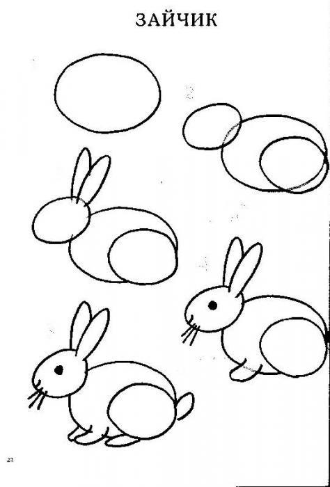 Пошаговые рисунки животных с помощью кругов и овалов (13)