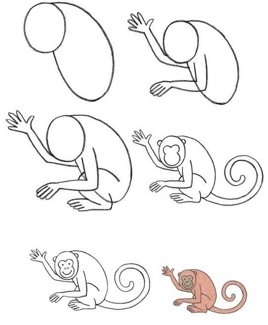 Пошаговые рисунки животных с помощью кругов и овалов (25)